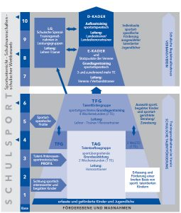 talent_organisationsstruktur